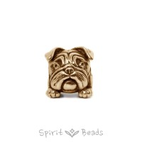 "Spiritbeads ""Rocky"" Gold"