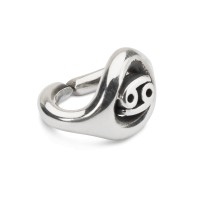 X Jewellery Cancer, single silver link
